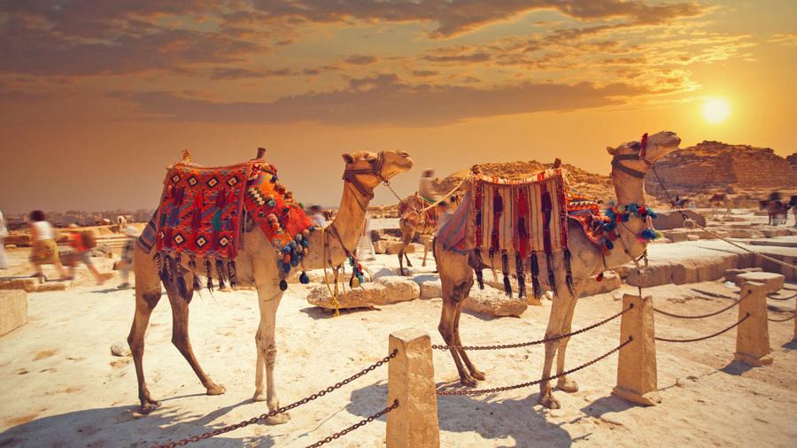 weihnachtsurlaub in ägypten